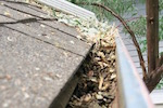 屋根の雨樋掃除