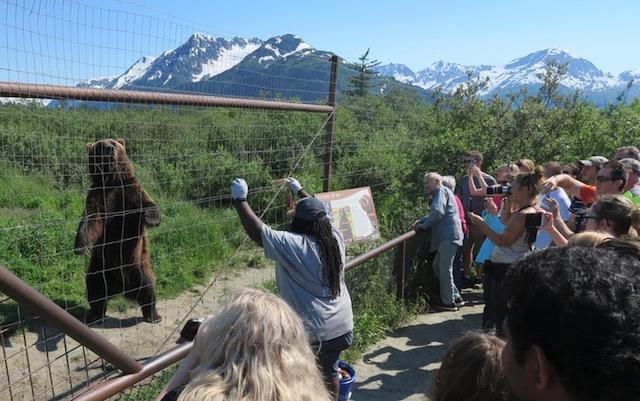 アラスカ野生動物保護センター