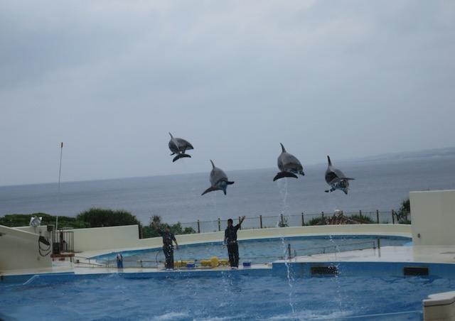 美ら海 水族館